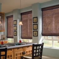hunterdouglas_shades2