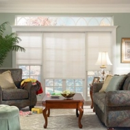 hunterdouglas_shades4